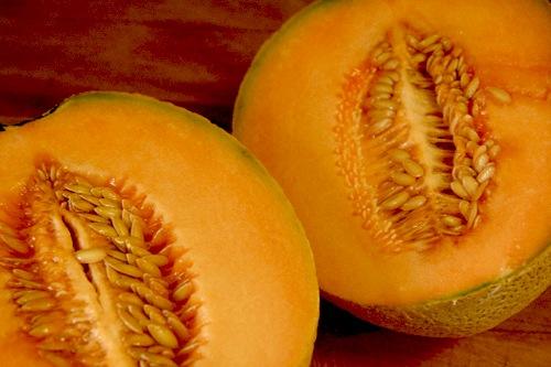 Cantaloupe melons (Italy 2013)